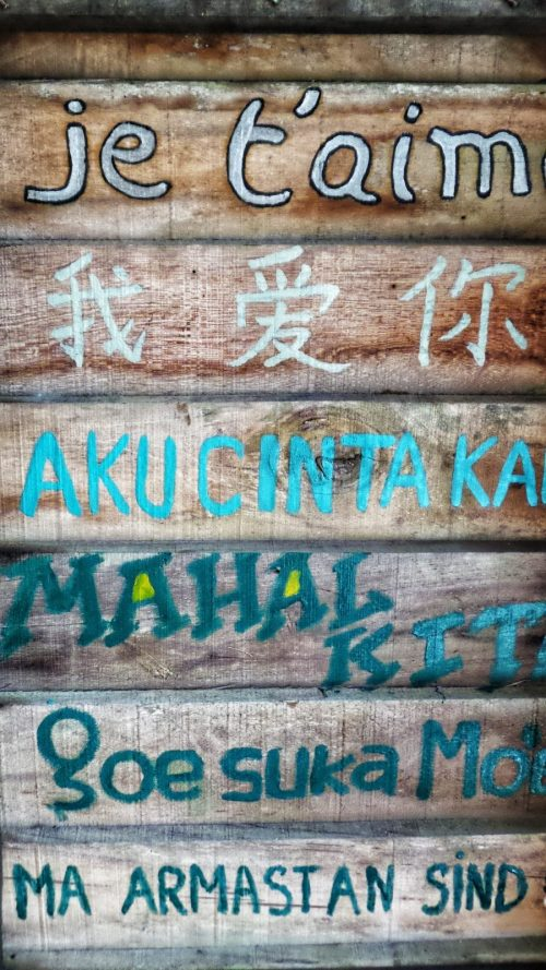 Regional dialects in Malaysia's Language Debate